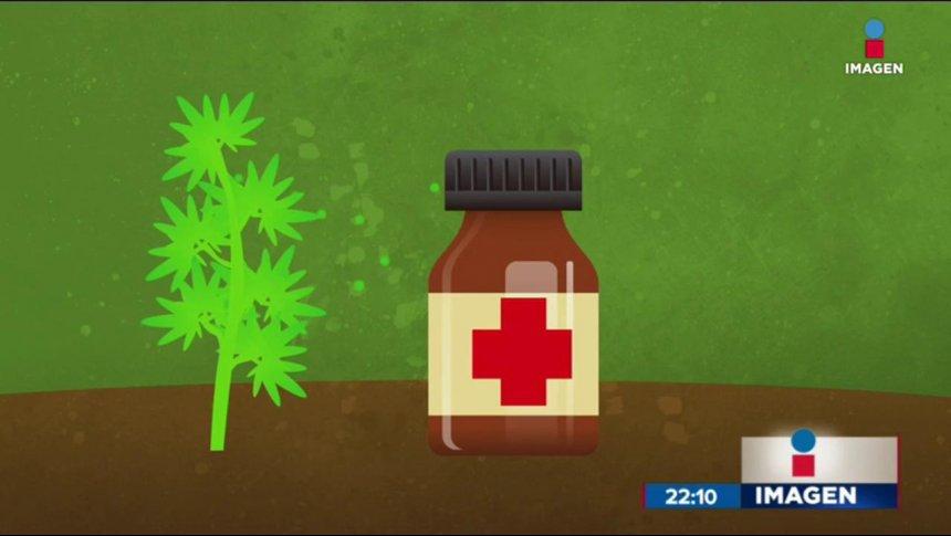 La marihuana medicinal ya será legal en México