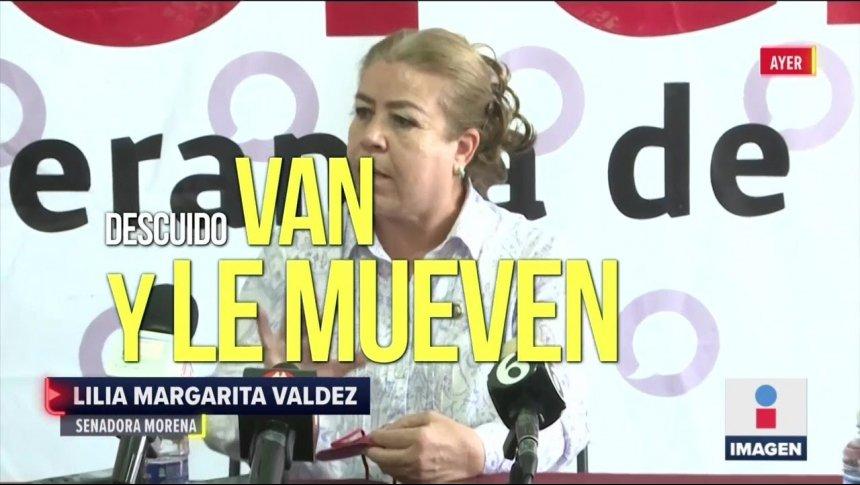 """Le mueven la ballena para que se caiga"": senadora de Morena"